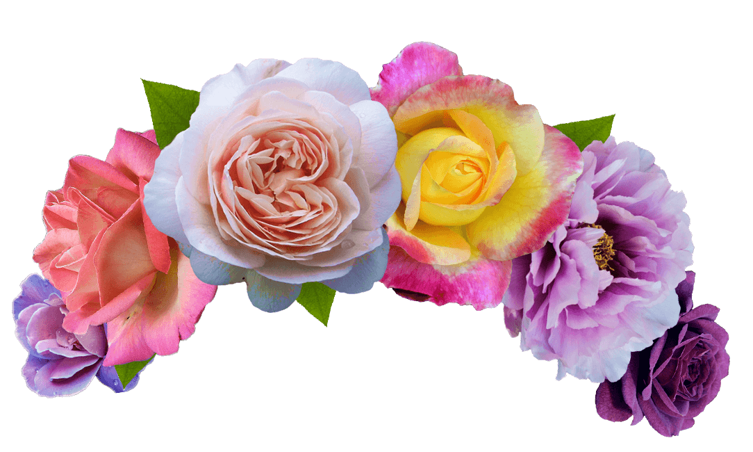 Flower headband png. Cut flowers crown search