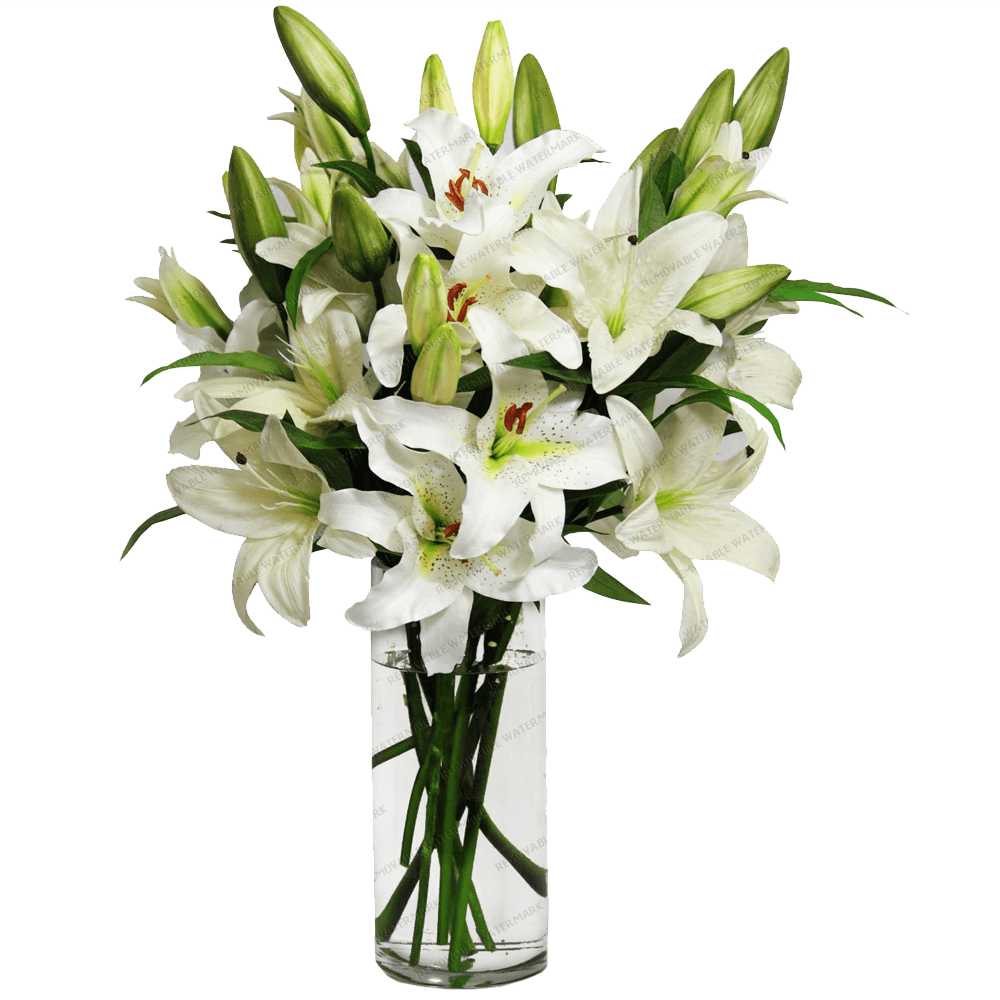 Flowers in a vase png. Lilies transparent stickpng
