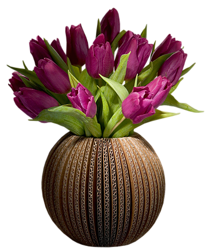 Tulip transparent vase clipart. Tulips png picture gallery