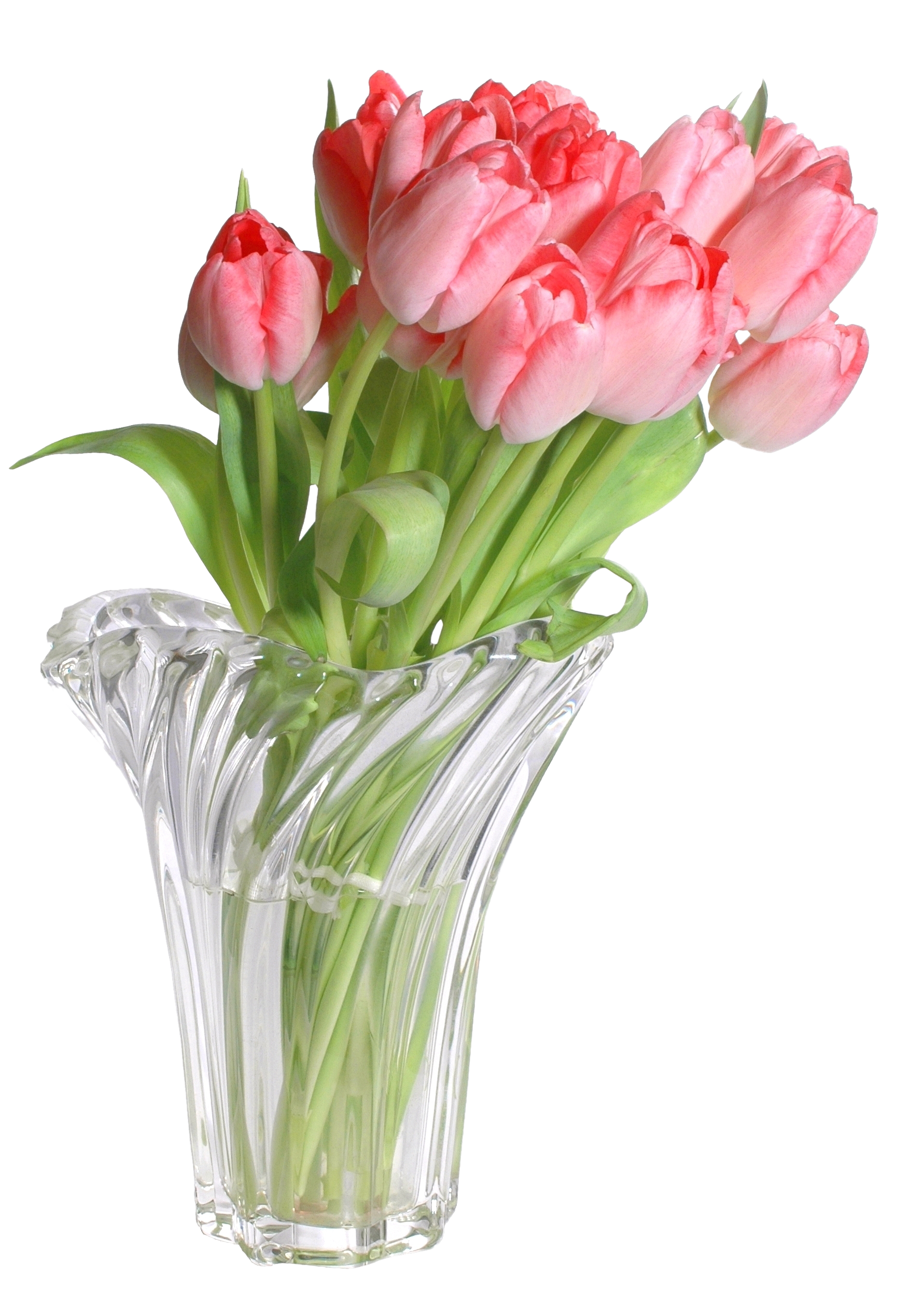Flowers in vase png. Images free download