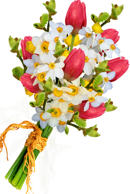 Flowers png. Bouquet of images free