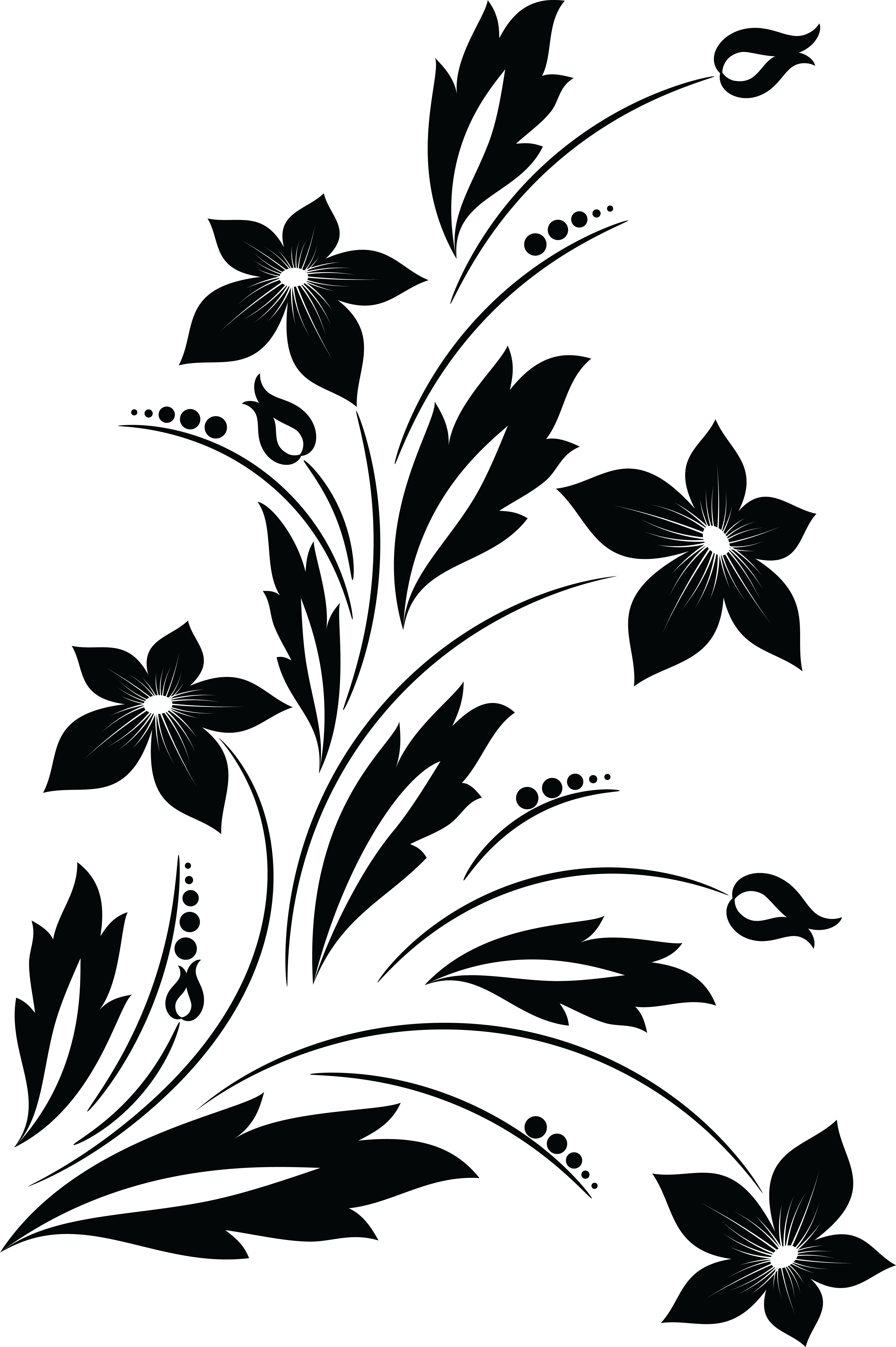 Flowers png black and white. Collection of floral
