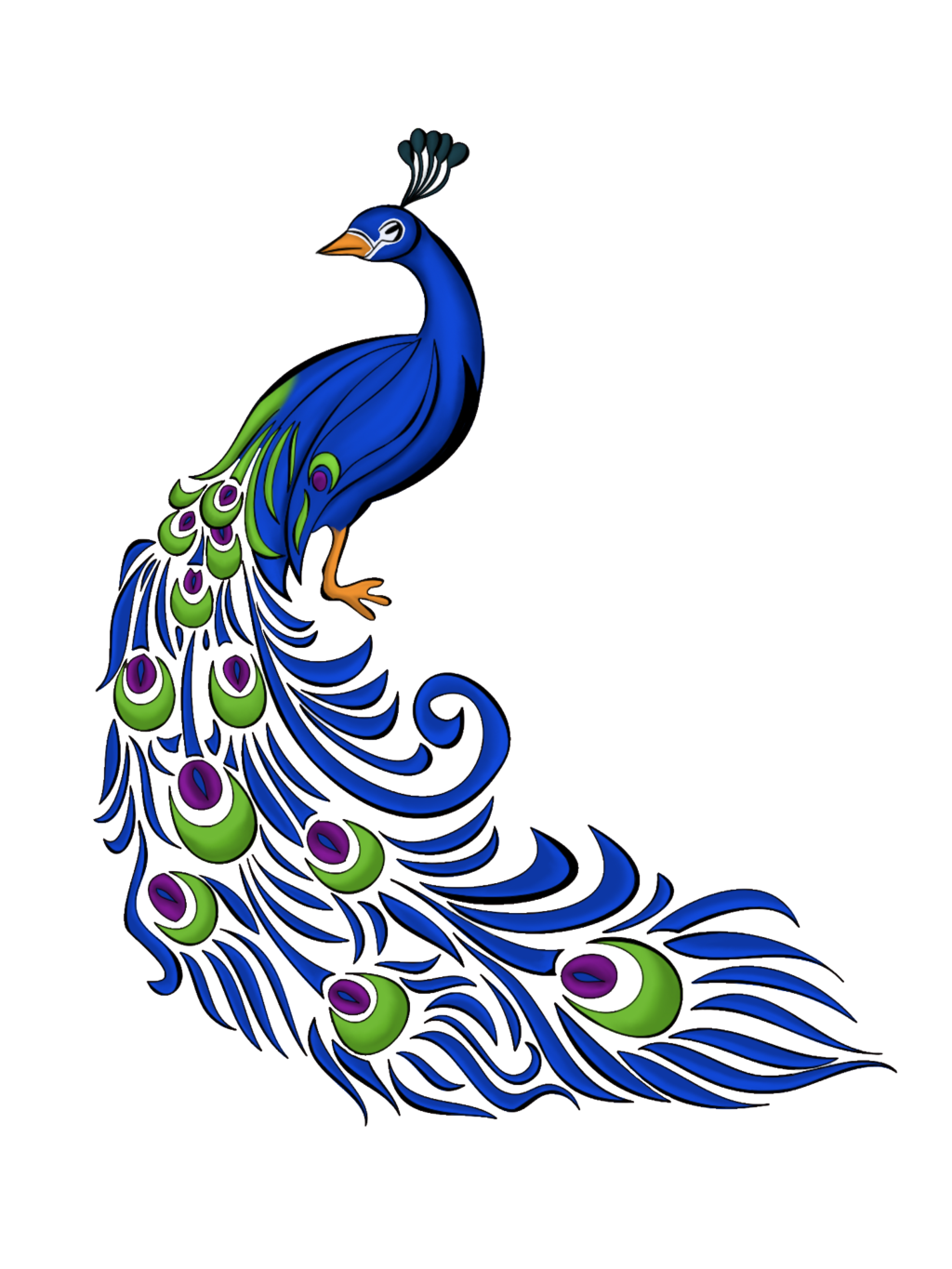 Social drawing colourful. Free peacock feather vector