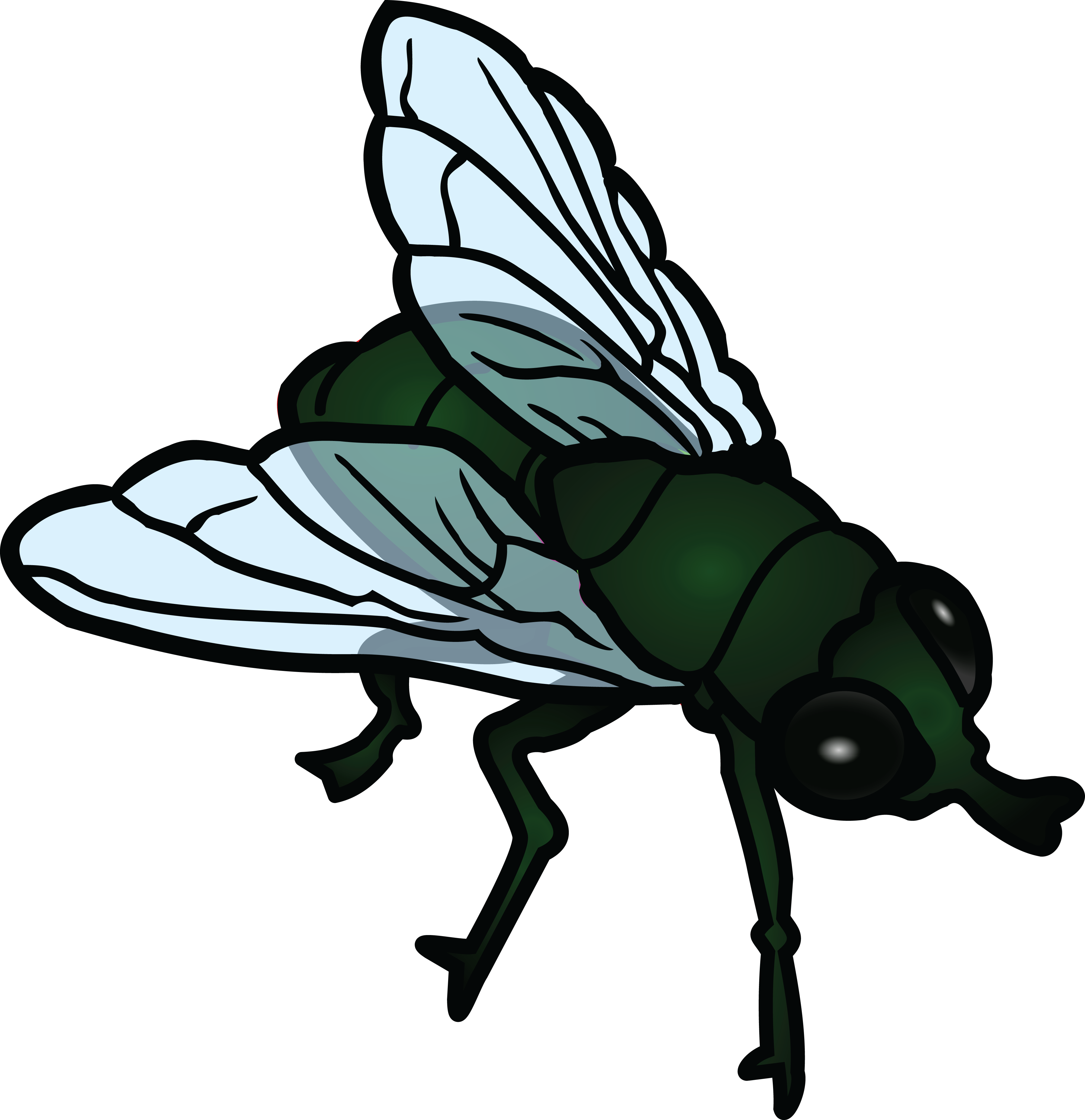 Fly clipart png. Collection of free flies