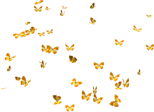 Flying butterflies png. Transparent pictures free icons