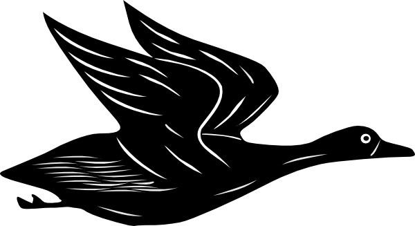 Flying duck png. Clip art at clker