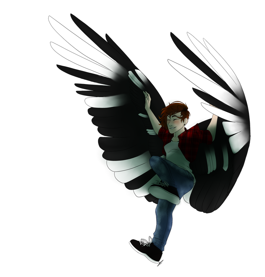 Transparent feathers flying. By dakotahybride on deviantart