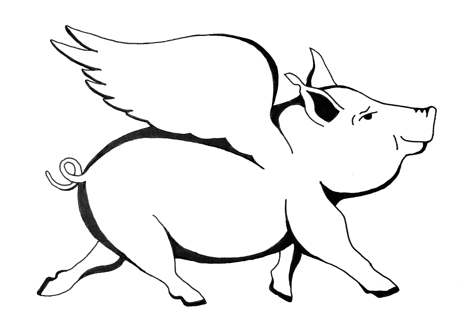 Drawing pig. The flying