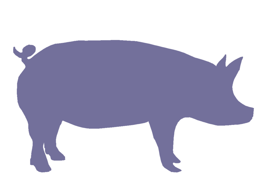Flying clipart at getdrawings. Pig clip art silhouette clip library