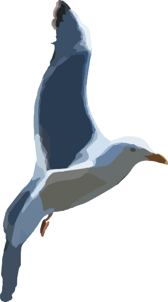 Clip art at clker. Flying seagull png image black and white stock
