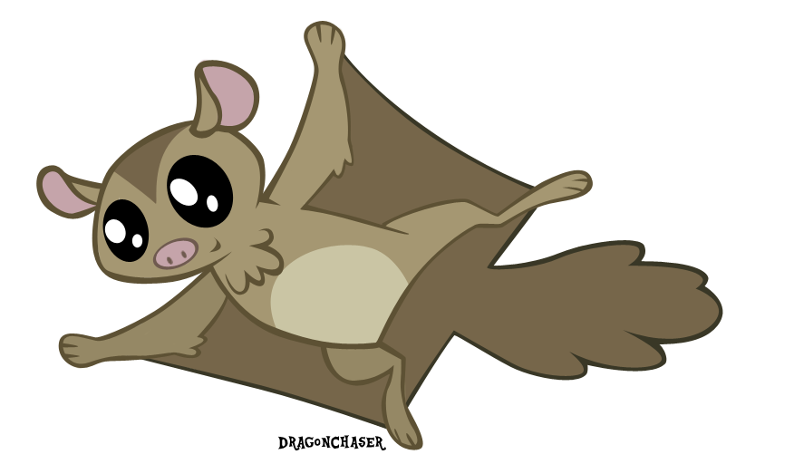 Flying squirrel png. Animal artist dragonchaser