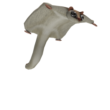 Flying squirrel png. Friend roblox