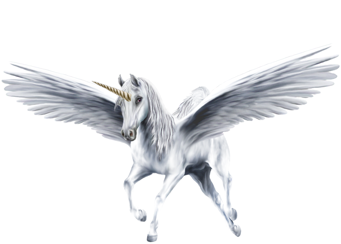 Flying unicorn png. Image an beautiful white