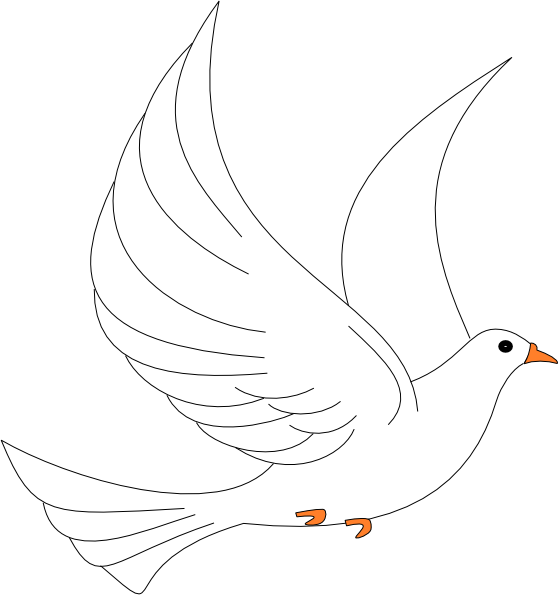 Vector doves in flight. Free dove images pictures