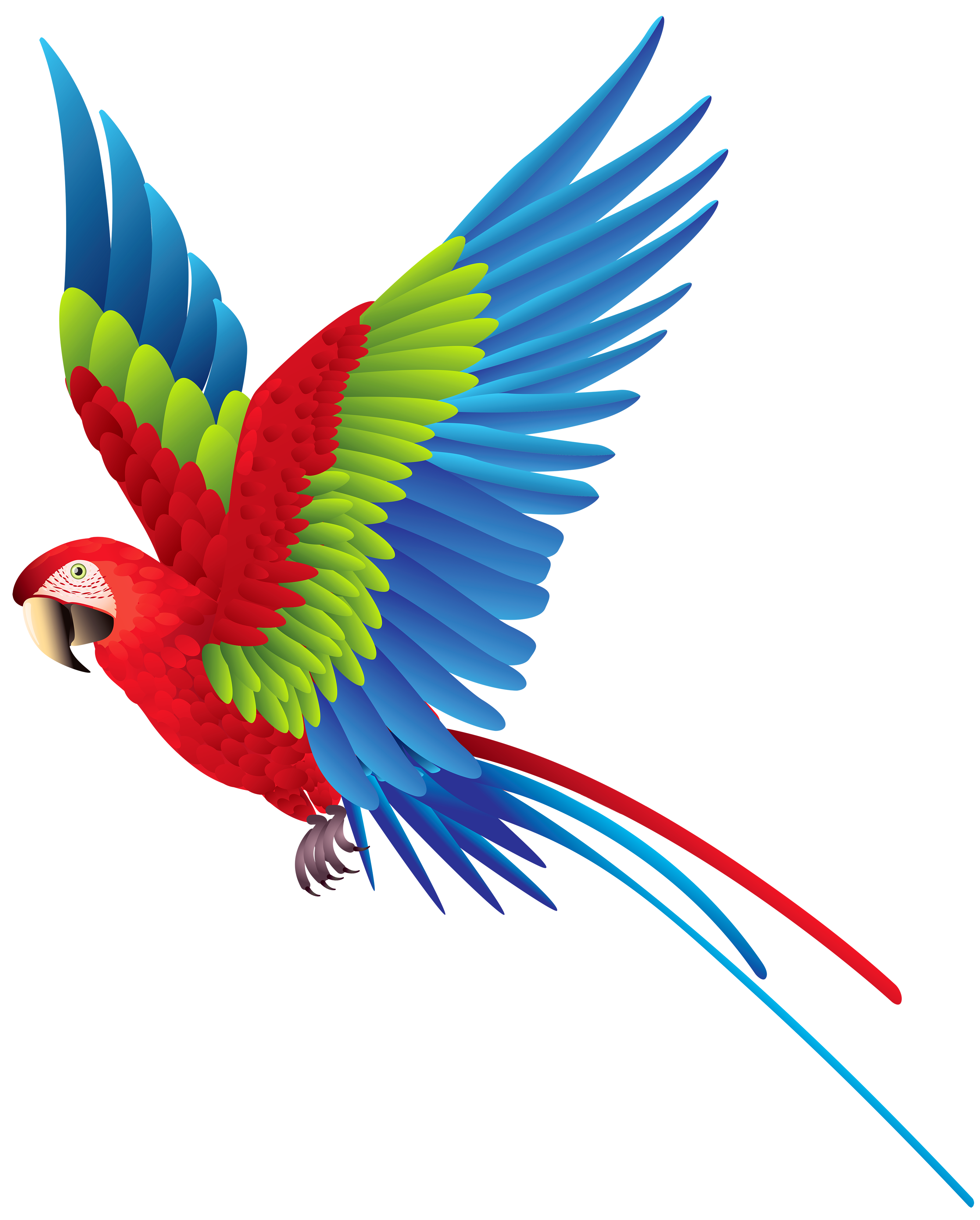 Vector parrot blue gold macaw. Beautiful nature clip art