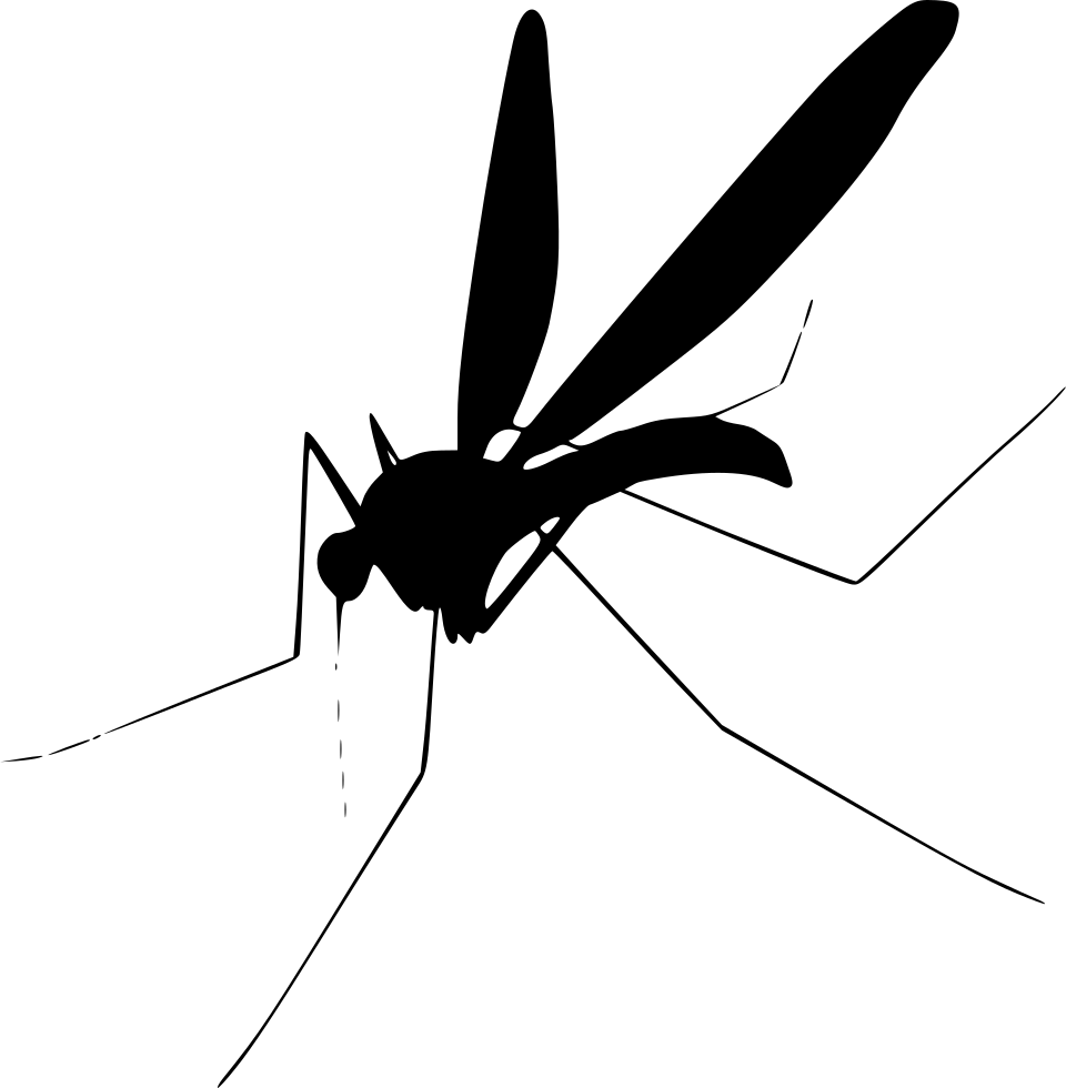 Flying vector mosquito. Png images free download