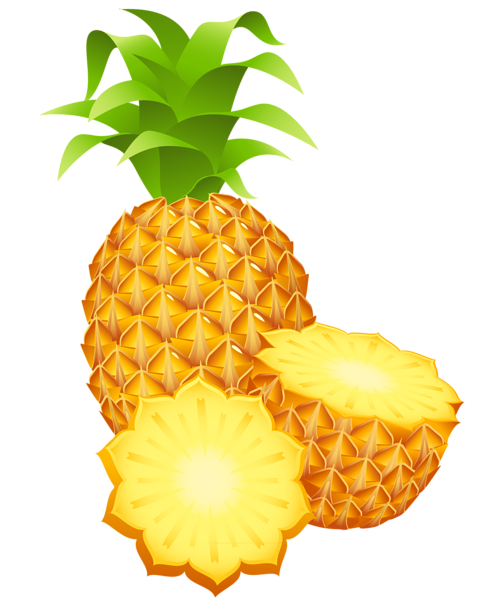 Vector fruits pineapple. Pin by courtney patterson
