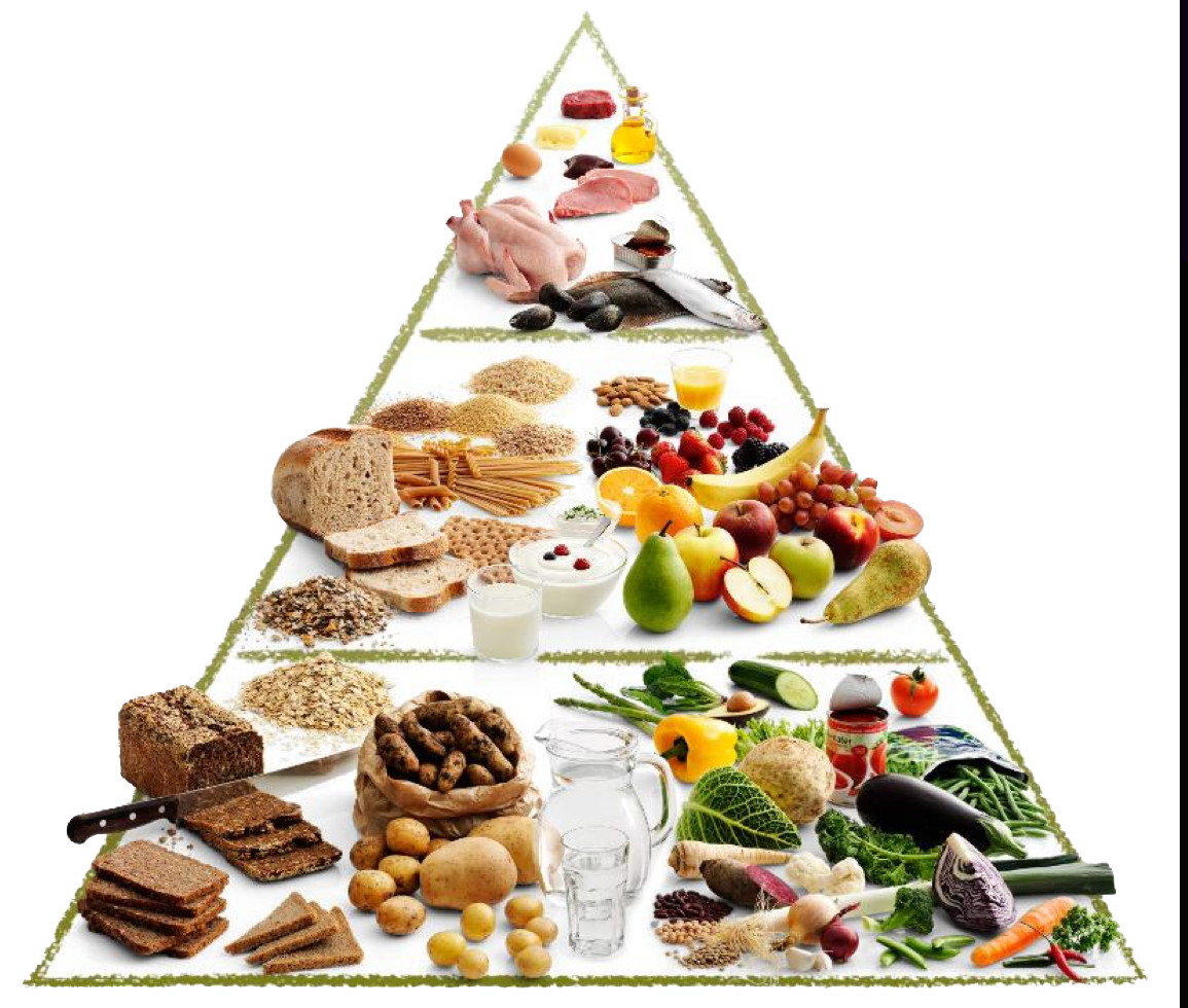 Food pyramid png. Uc tangerine