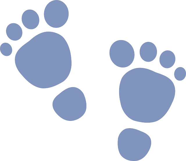 Foot clipart baby boy. Free image on pixabay
