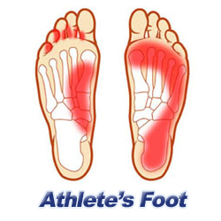 foot clipart foot heel