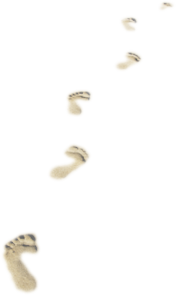 Footprints in the sand png. Psd official psds share