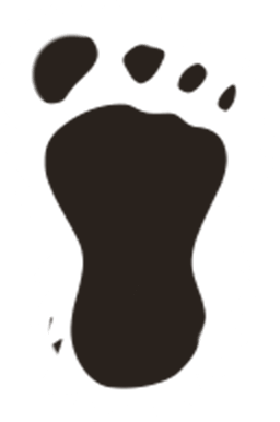 Footprints clipart sasquatch. Can you spot the