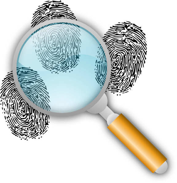 From the desk of. Forensic drawing transparent stock