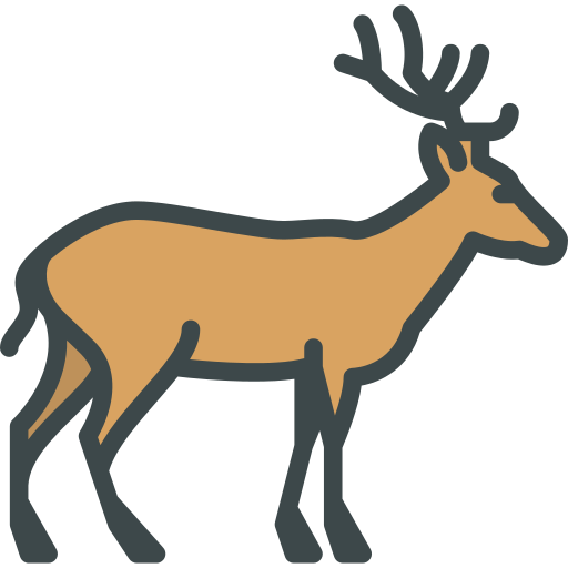 Forest animals png. Hare icon repo free