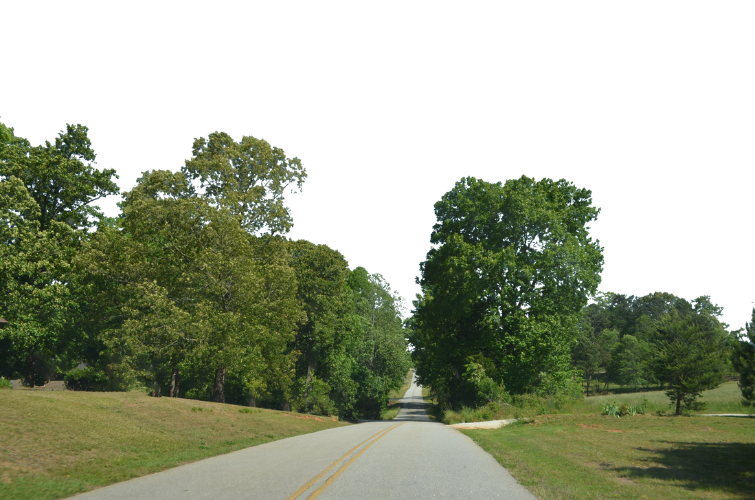 Country background png. Road forest stock by