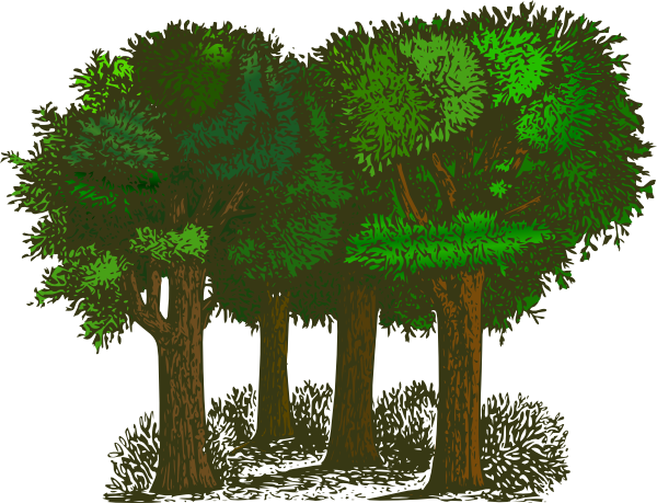 Forest clipart forest border. Cartoon
