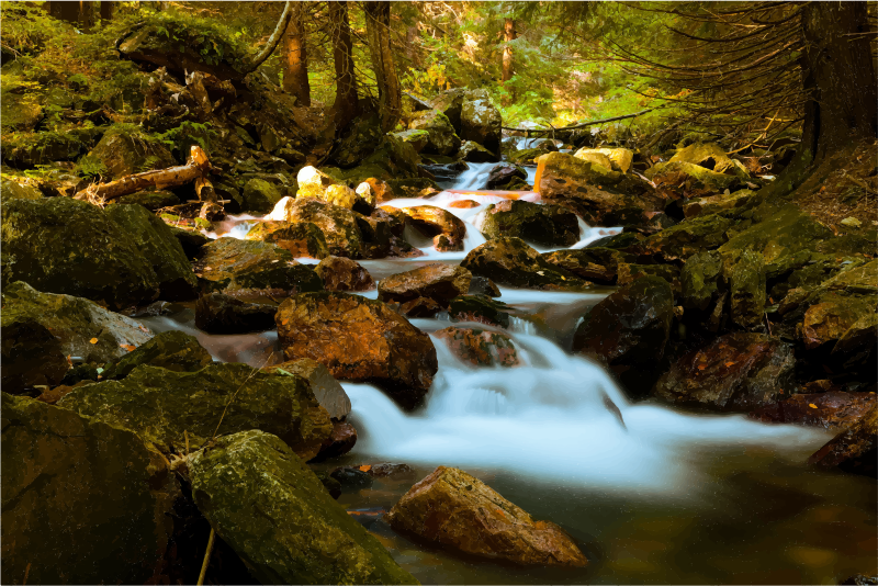Forest clipart beautiful forest. Mountain stream in medium