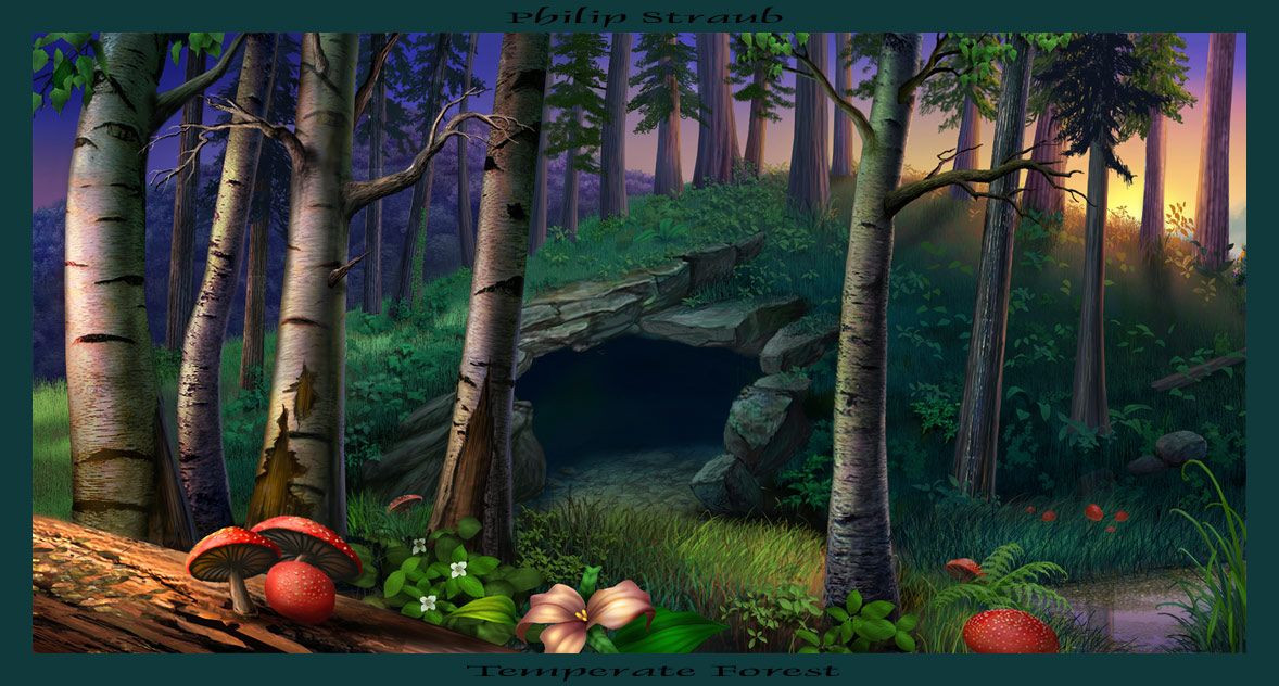 Forest clipart cave in. Lovely concept enviornment art