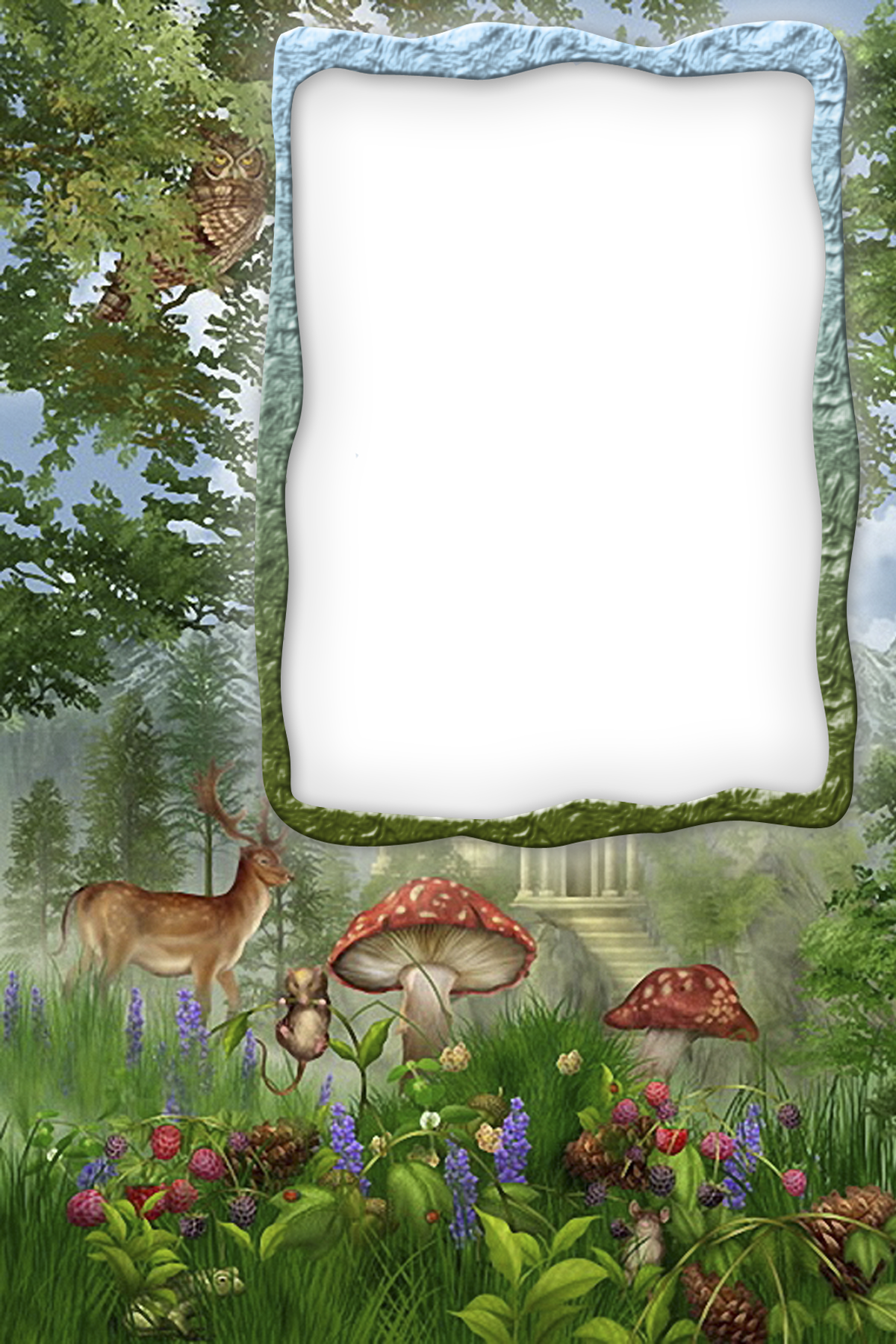 Transparent frame gallery yopriceville. Forest clipart forest border jpg black and white