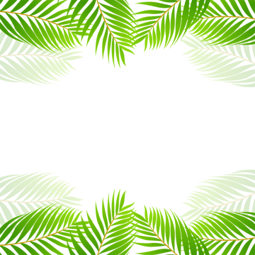 Green tropical leaf border. Leave vector graphic transparent download