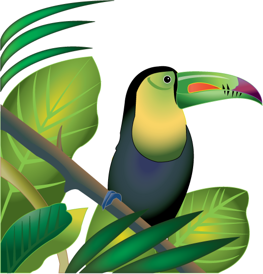 Scary clipart jungle. Forest parrot free on