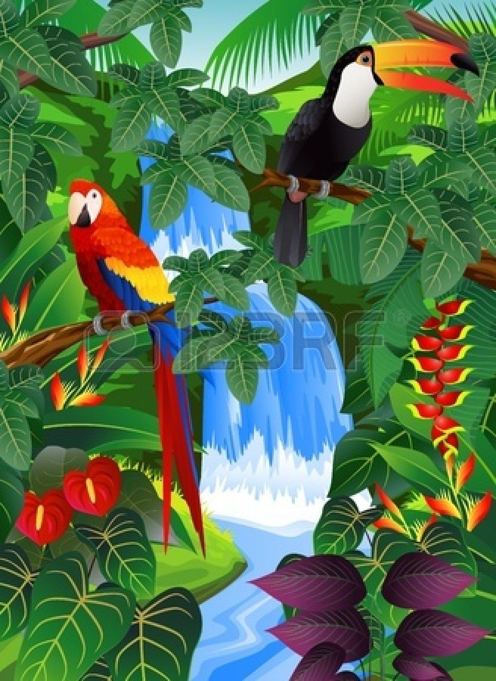 Forest clipart parrot. Rainforest toucan and macaw