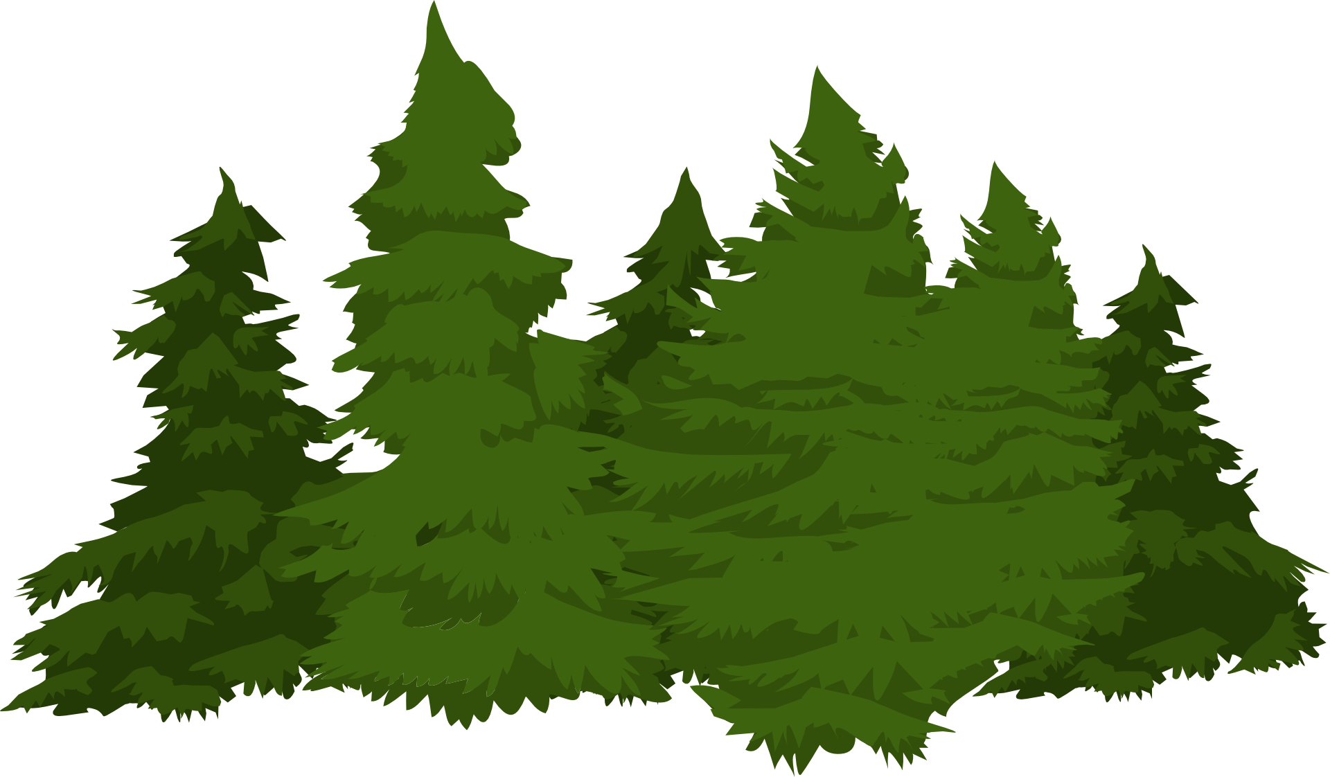 Conifers transprent free download. Forest pine trees png svg free