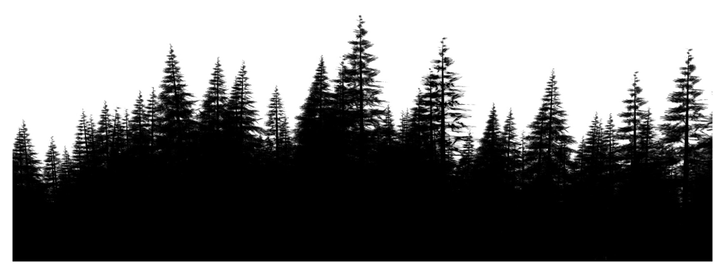 Environment vector forest. Png file download free