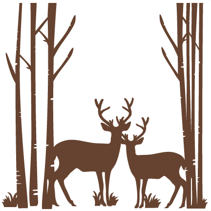 Forest svg deer silhouette. Birch trees with scrapbook
