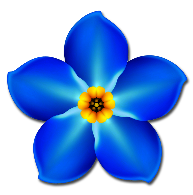 Forget me not flower png. Marketing strategies just click
