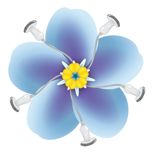 Forget me not flower png. Training ultrasound fmnu
