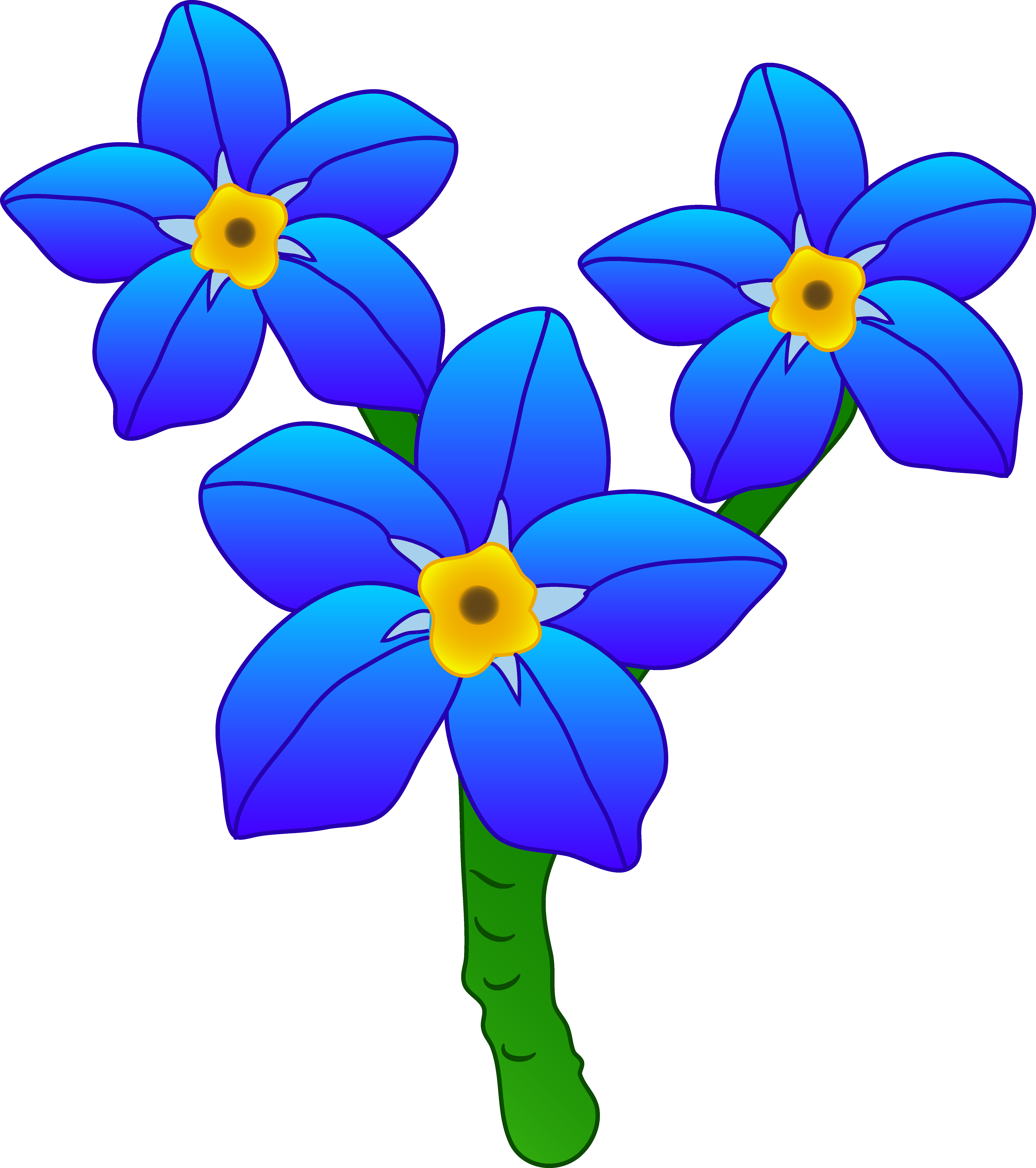 Forget me not flower png. Three flowers free clip