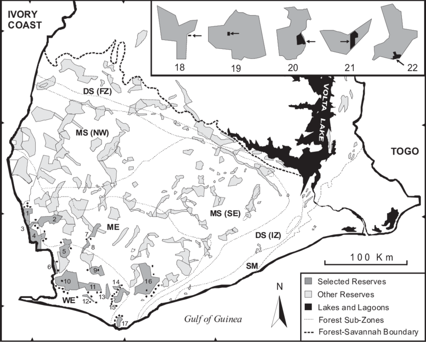 Habitat drawing forest. Map of southern