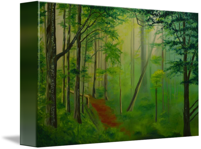 Forrest drawing foggy forest. Path by nick froyd