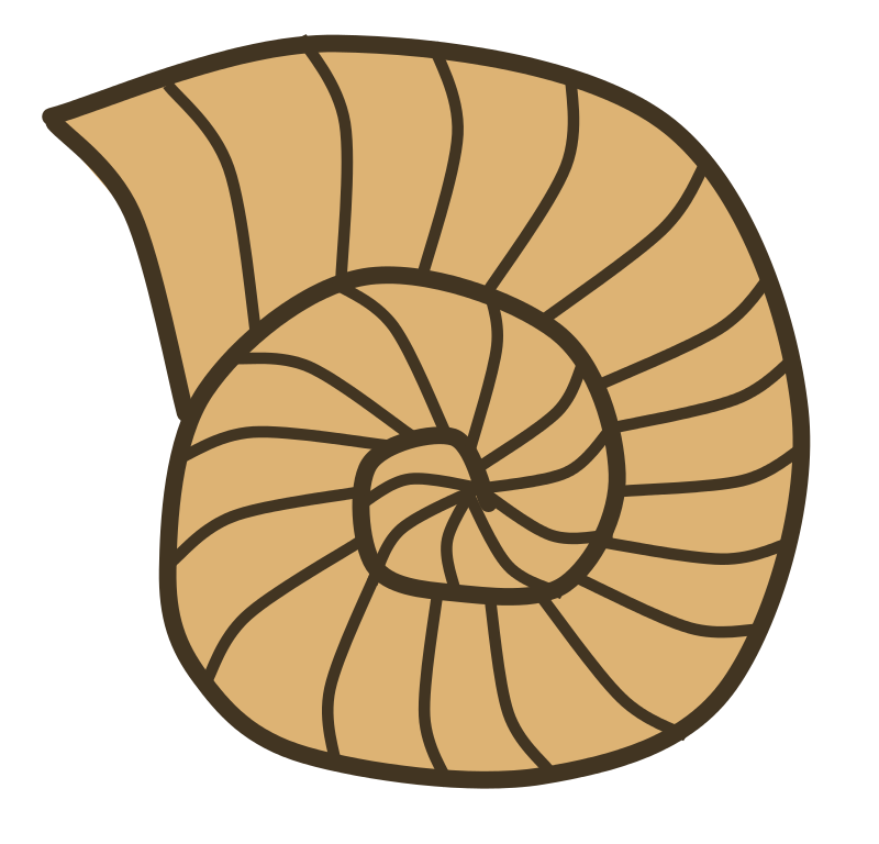 Fossil clipart. Free cliparts download clip