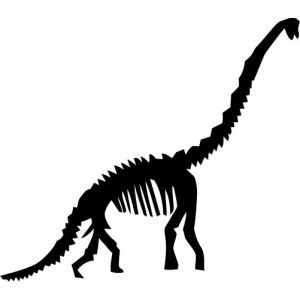 Dinosaur panda free images. Fossil clipart brachiosaurus png free library