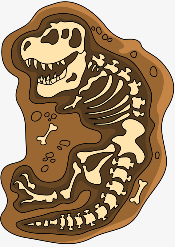 Dinosaur archeology png image. Fossil clipart paw print clip art royalty free