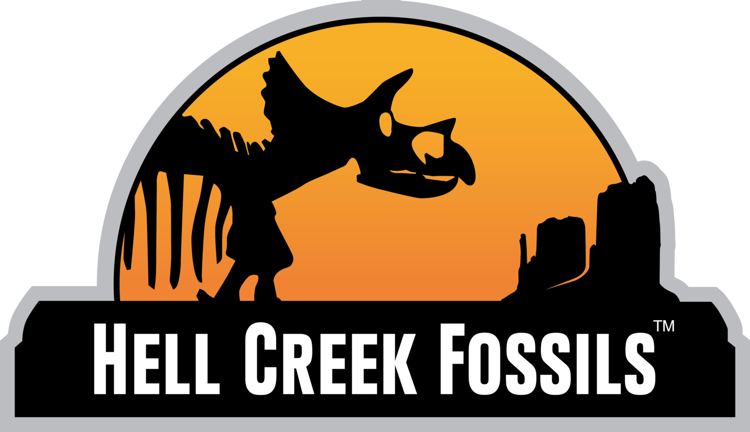 Fossil clipart plant fossil. Fossils hell creek