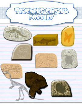 Fossil clipart trace fossil. Clip art science fossils