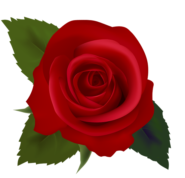 Rose clipart. Free download clip art
